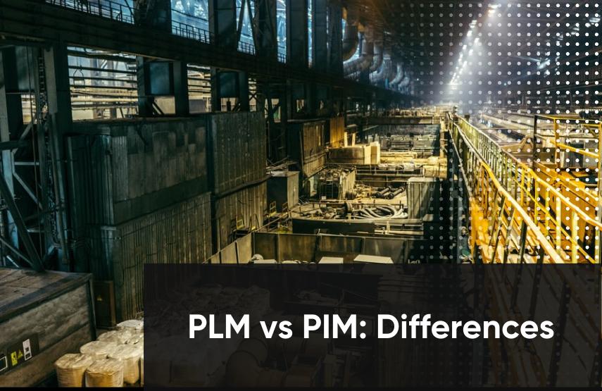 plm vs pim differences
