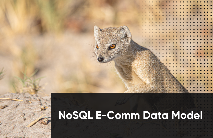 NoSQL E-Commerce Data Model